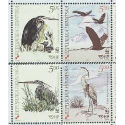 Corwacja - Nr 674 - 77 Pasek 2004r - WWF - Ptaki