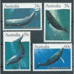 Australia - Nr 777 - 80 1982r - Ssaki morskie