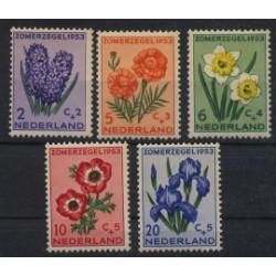 Holandia - Nr 607 - 111953r - Kwiaty
