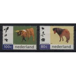 Holandia - Nr 1608 - 091997r - Ssaki - Koń