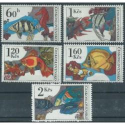 Czechosłowacja - Nr 2260 - 64 1975r - Ryby