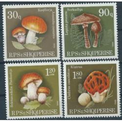 Albania - Nr 2431 - 34 1990r - Grzyby