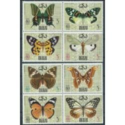 Dubaj - Nr 295 - 021968r - Motyle