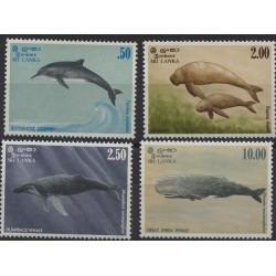 Sri -  Lanka - Nr 606 - 091983r - Ssaki morskie